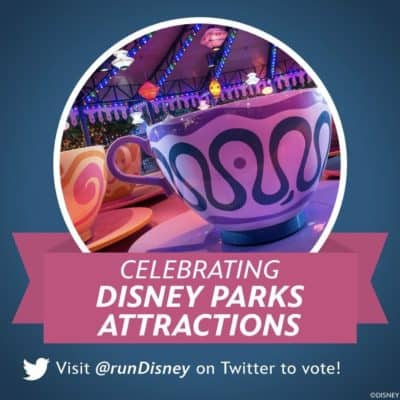 2020 runDisney Summer Virtual Series Theme Winner!