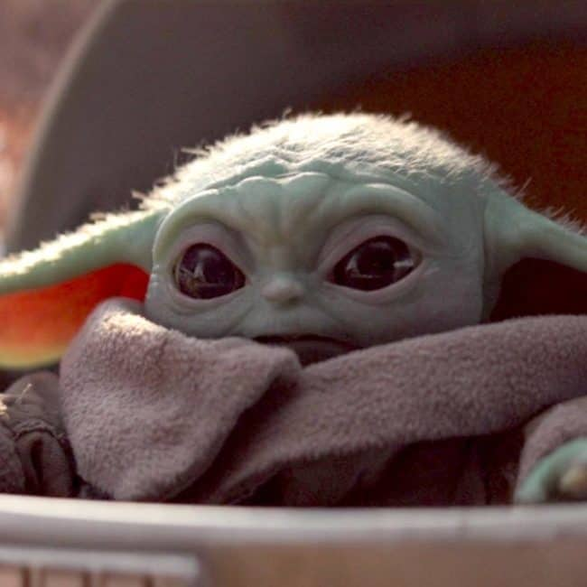 Best baby yoda memes from The Mandalorian