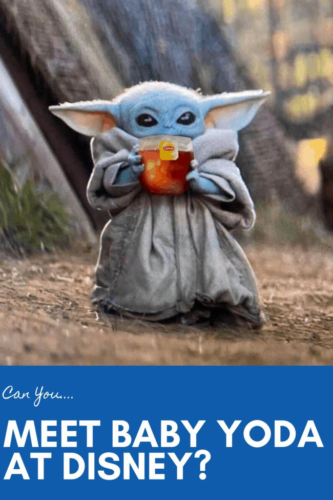Can you meet Baby Yoda at Disney?