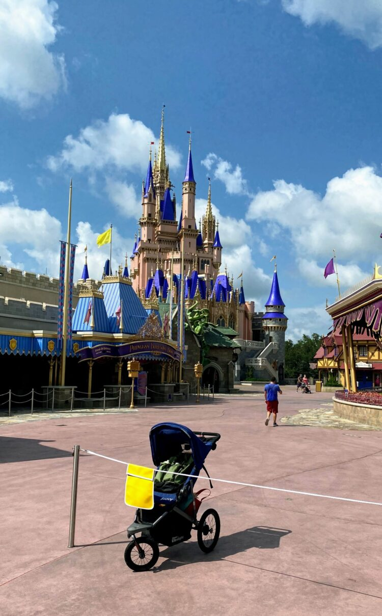 strollers at magic kingdom