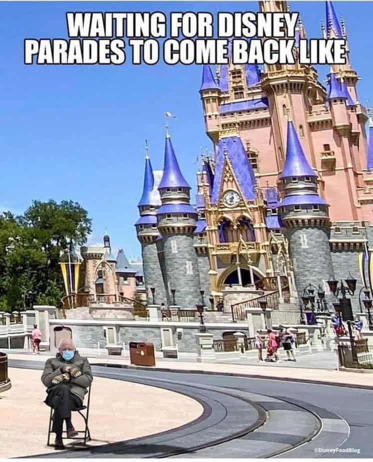 Disney bernie sanders memes Castle