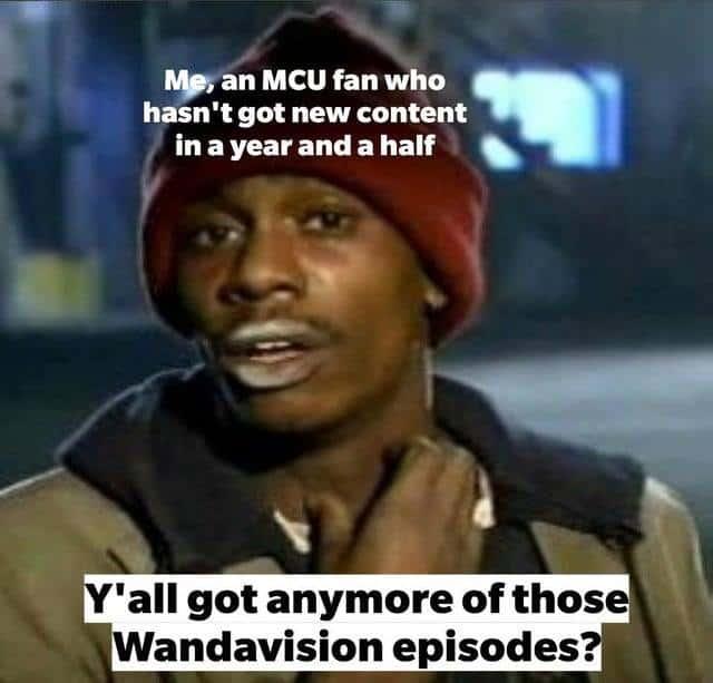 best wandavision memes got any more of those marvel series